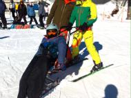 Attività sulla neve 2015-2016